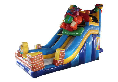 Birthday Party Inflatable Slide