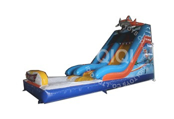 Planes inflatable water slide
